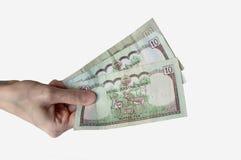 Kobieta trzyma trzydzieści Nepal rupii notatek w ona ręka Obraz Royalty Free
