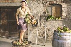 Kobieta ubijanie winogrona w farnerhouse obrazy stock