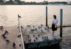 Kobieta ucznia karmienia ryba przy portem Zdjęcia Royalty Free