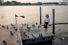 Kobieta ucznia karmienia ryba przy portem fotografia royalty free