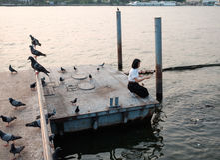 Kobieta ucznia karmienia ryba przy portem Zdjęcie Royalty Free