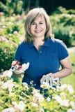Kobieta uprawia ogródek białych kwiaty i trzyma ogrodniczych narzędzia dalej fotografia stock