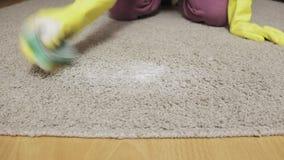 Kobieta w żółtych gumowych rękawiczkach czyści dywan z pianą i gąbką zbiory wideo