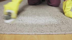 Kobieta w żółtych gumowych rękawiczkach czyści dywan z pianą i muśnięciem zbiory