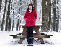 Kobieta w Burr stanu stawowym parku w zimie fotografia stock