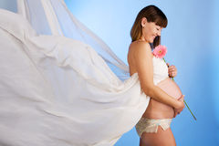 kobieta w ciąży piękni potomstwa Obrazy Royalty Free