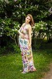 Kobieta w ciąży pozuje przeciw lilemu tłu Fotografia Stock