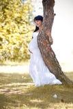 Kobieta w ciąży target899_0_ w parku Obrazy Stock