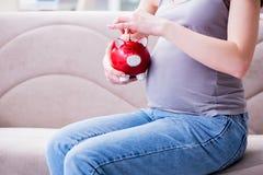 Kobieta w ciąży z brzucha brzuszka obsiadaniem na kanapie w domu Obrazy Stock