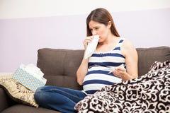Kobieta w ciąży z zimnem Obraz Royalty Free