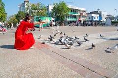 Kobieta w jaskrawej czerwieni sukni kuca żywieniowych gołębie w Pratu Tha Fotografia Royalty Free