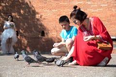 Kobieta w jaskrawej czerwieni sukni kuca żywieniowych gołębie w Pratu Tha Zdjęcia Stock