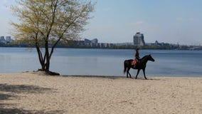 Kobieta w kowbojskim stroju jedzie czarnego konia, powietrzny materiał filmowy, 4k zdjęcie wideo