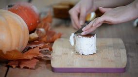 Kobieta w kuchni produkuje małe ciasto dyniowe zbiory wideo