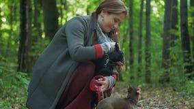 Kobieta w lesie stawia małego psa na ziemi i drugi ono ciągnie smycz zbiory