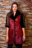 Kobieta w Luksusowym czarnego i czerwonego lamparta Futerkowym żakiecie Obraz Royalty Free