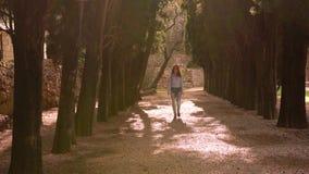 Kobieta W Przypadkowych ubraniach Chodzi Przez parka zbiory wideo