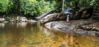 Kobieta w sarong pozycji na rzeki skale obrazy stock