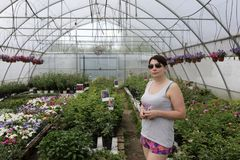 Kobieta w szklarni kwiaty zdjęcia stock
