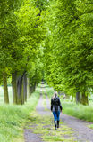 Kobieta w wiosna alei Obraz Royalty Free