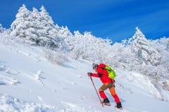 Kobieta w zimy podróży z plecakiem Zdjęcia Royalty Free