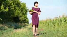 Kobieta wolno znosi kukurydzanej uprawy w słomianym kapeluszu i Pojęcie rolnictwo i żniwo zbiory wideo
