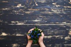Kobieta wręcza mienia flowerpot z błękitnymi śnieżyczkami na drewnianym gru Zdjęcia Stock
