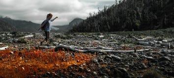 Kobieta wycieczkowicz chodzi w nieżywej dolinie fotografia stock