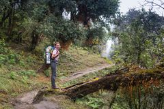 Kobieta wycieczkowicz na wierzchołku zdjęcie royalty free