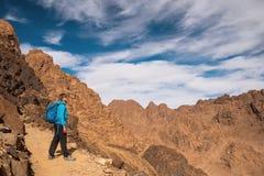 Kobieta wycieczkowicz z plecakiem cieszy się widok w pustyni Obraz Stock