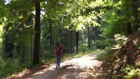 Kobieta wycieczkuje Niemieckiego lasowego przesunięcie obiektyw zbiory wideo
