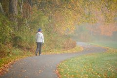 Kobieta wycieczkuje przy jesień mgłowym dniem obraz royalty free