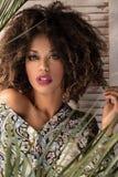 Kobieta z afro fryzury i splendoru makeup zdjęcie stock