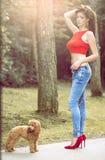 Kobieta z jej pudla psem w lesie Fotografia Stock