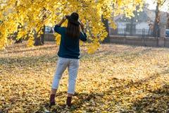 Kobieta z kapeluszowy opartym pod drzewem z z powrotem żółci liście Zdjęcia Royalty Free