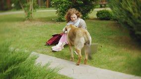 Kobieta z laptopem relaksuje na trawa gazonie w pięknym zieleń parku z jej psem Młoda odwiecznie kobieta w zbiory