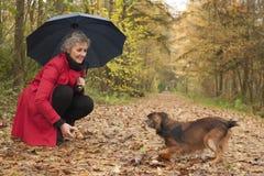 Kobieta z parasolem bawić się z jej psem Zdjęcia Royalty Free