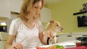 Kobieta z psem w kuchni przy sto?em ?niadaniowa przyja?? m??czyzna i zwierz? domowe zbiory