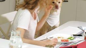 Kobieta z psem w kuchni przy sto?em ?niadaniowa przyja?? m??czyzna i zwierz? domowe zdjęcie wideo