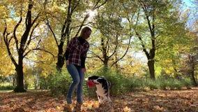 Kobieta z psem w parku zbiory wideo