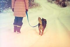 Kobieta z psim odprowadzeniem na śnieżnej drodze Zdjęcia Royalty Free