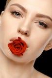 Kobieta Z rewolucjonistki różą Fotografia Stock