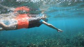 Kobiety apnea snorkeling zbiory