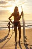 Kobiety Bikini Surfingowiec & Surfboard Zmierzchu Plaża Fotografia Royalty Free