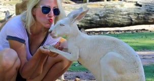 Kobiety całowania kangur