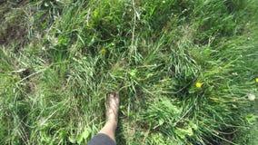 Kobiety chodzi? bosy zielon? traw? pov zbiory wideo
