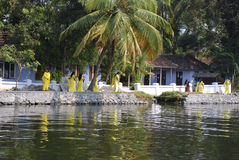Kobiety chodzi Kerala stojące wody Zdjęcie Stock