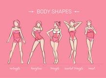 Kobiety ciała kształty Obrazy Stock