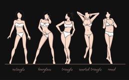 Kobiety ciała kształty Zdjęcie Royalty Free