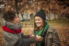 Kobiety conversating w parku Zdjęcia Stock